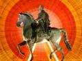 20090924124247_cheval-place-bellecour-roue-lumiere.jpg