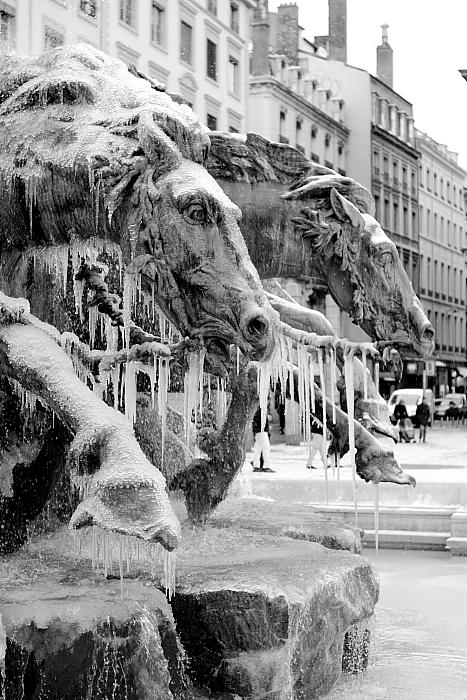 20091220020753_fontaine_des_terreaux_glace.jpg